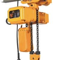 5 Ton Electric Chain Hoist