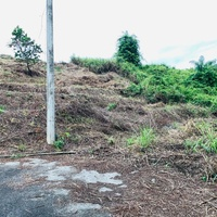 Windsor Heights Arima land Fully approved