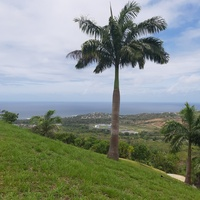 Land in French Fort, Tobago