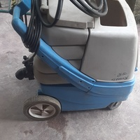 Carpet and detail extractor