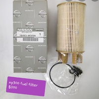 Pickup fuel filters