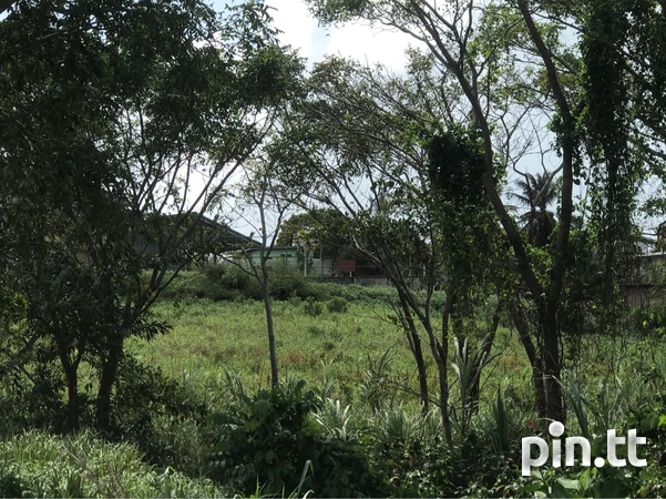 Over 2 Acres Agricultural Land-4