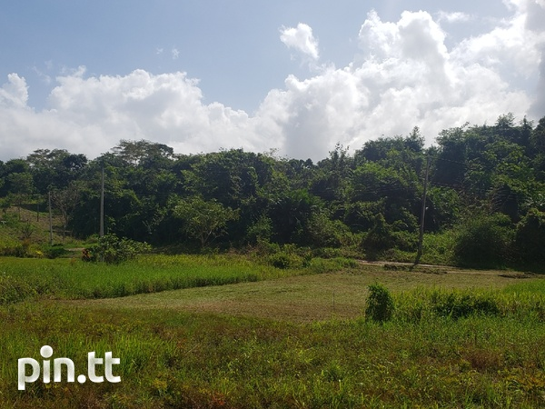 Residential Land Todd's Road Chaguanas.-8