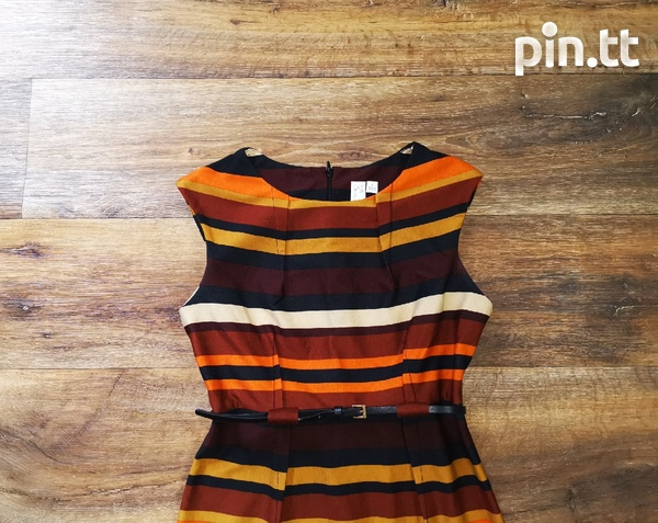 Brown Striped Dress with belt-2
