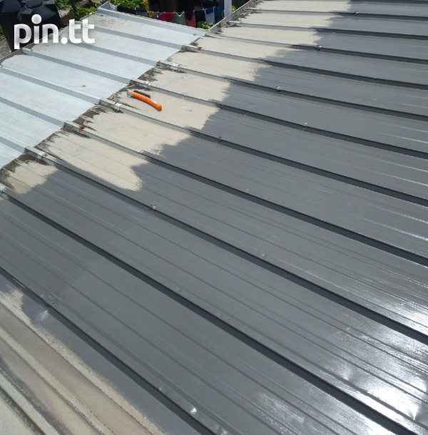 Roof painting-3