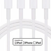 iPhone Cables Changers