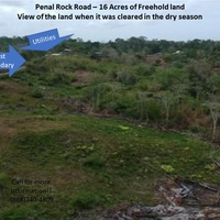 Investment Opportunity- 16 Acres of Penal Rock Road Freehold Land