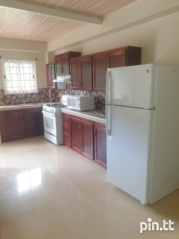 1 Bedroom Fully Furnished Belmont Apartment-3