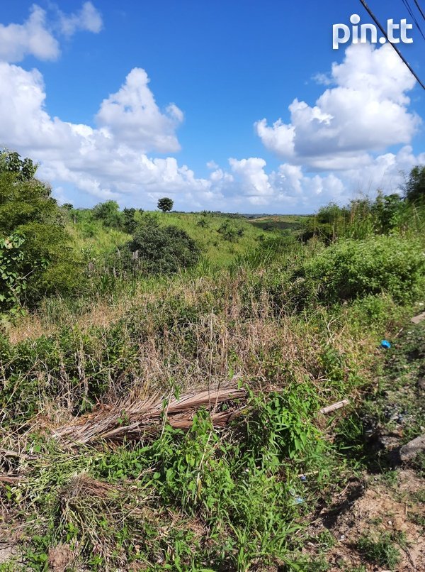 Land in Princes Town-3