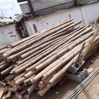 Bamboo 9 ft length 60 pcs available.