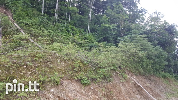 PLOTS OF LAND BLANCHISSEUSSE RD ARIMA CASH BUY ONLY-1