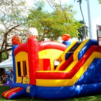Sport themed bounce and slide bounce house