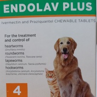 Ivermectin Dewormer for Dogs