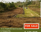 Gasparillo Freehold Land