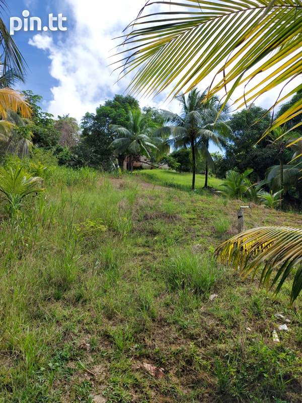 32,000 s.f land with approvals, Plum Mitan Road, Manzanilla-1
