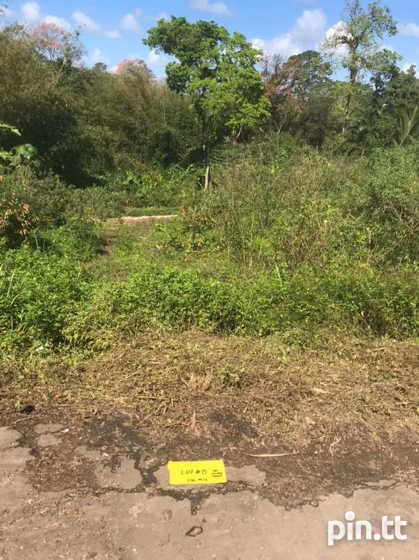 Lots - Campbell Trace, Libertville, Rio Claro-7