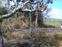 2 acres of homestead/agricultural land