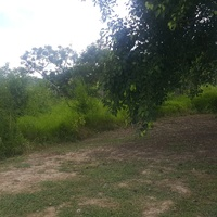 1 ACRE PARCEL OF LAND SIEWDASS ROAD FREEPORT