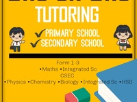 Online ONE ON ONE TUTORING