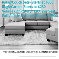 PROFESSIONAL Uphlostery Cleaning Services