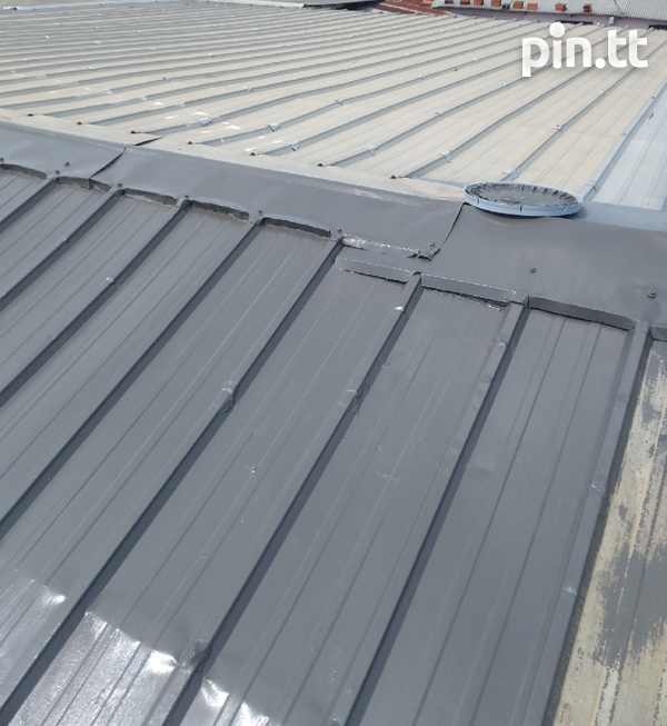 Roof painting-1