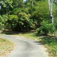 13 ACRES OF LAND TOCO