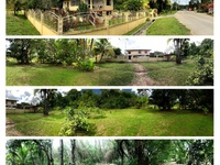 Investment Opportunity in Union Village Mayaro