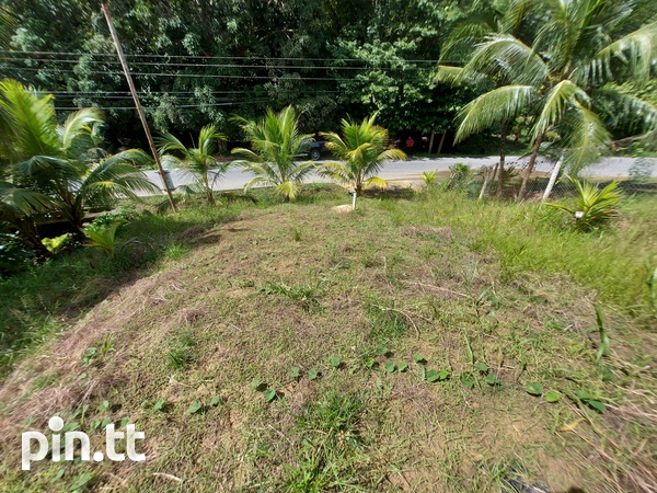 32,000 s.f land with approvals, Plum Mitan Road, Manzanilla-4