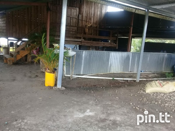 Agriculture Land, 7 Acres-3