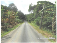 1 Acre Freehold Land Flemming Road, Fishing Pond, Sangre Grande