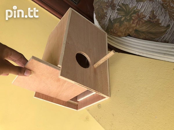 Boxes For Birds-5