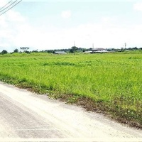 1 ACRE PLOTS FREEPORT FINAL APPROVALS